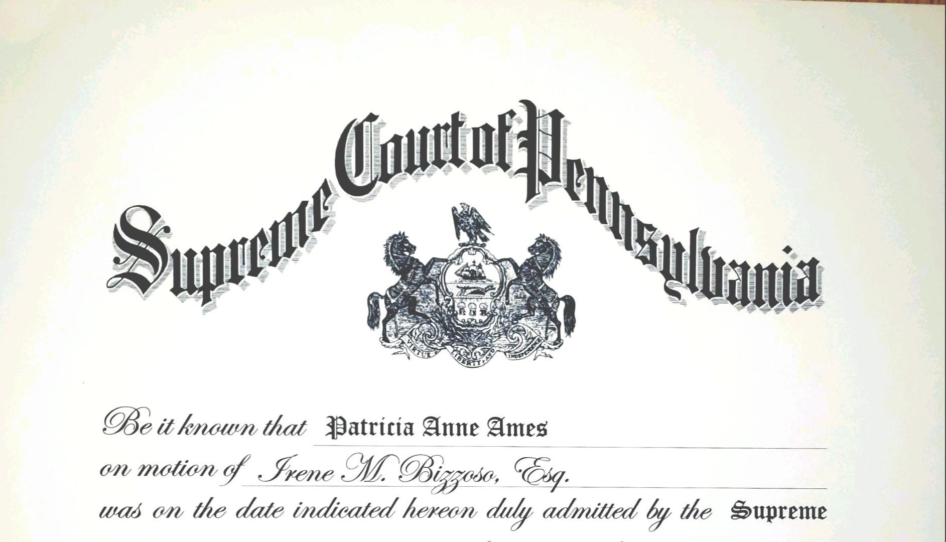 PA License.jpg