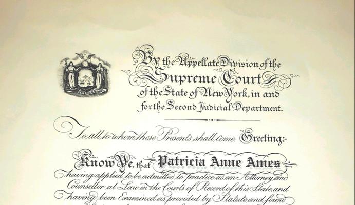 NY License.jpg