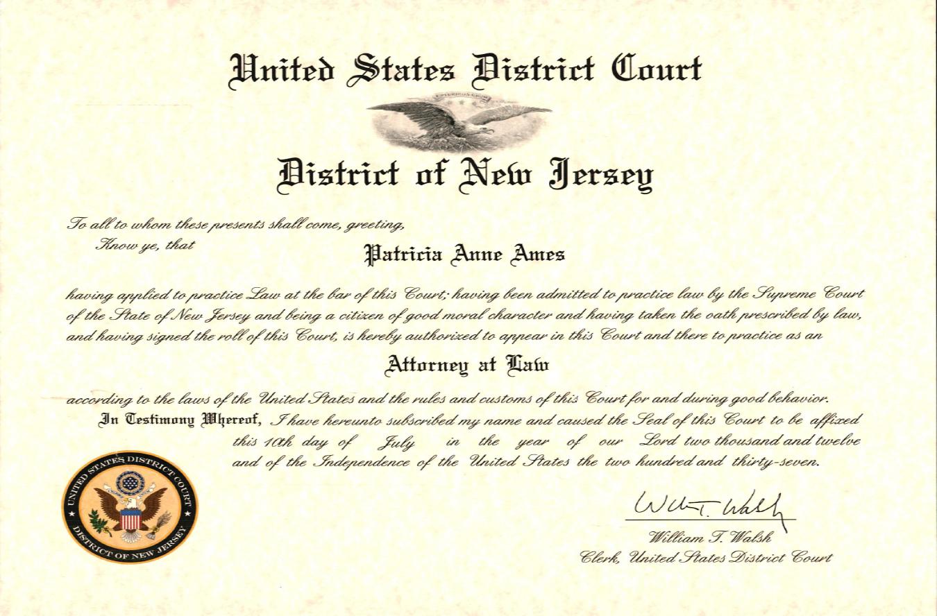 NJD- license.png