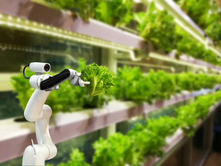 Robotics in Food Safety