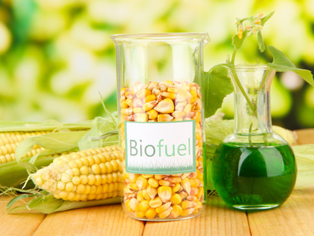 Synthetic Biology and Next-Generation Biofuels