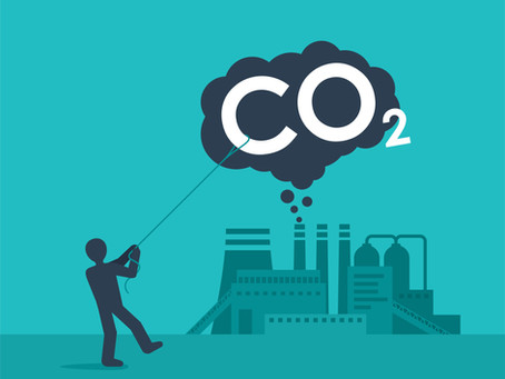 Synthetic Biology & Carbon Capture