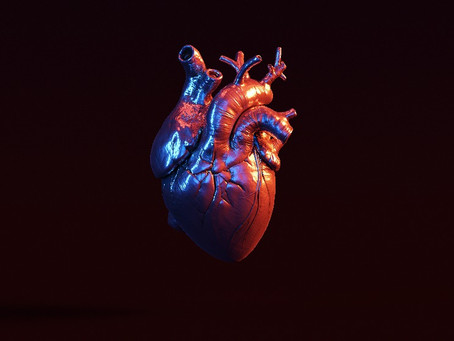 3D Printed Organs – From Science Fiction to Reality?