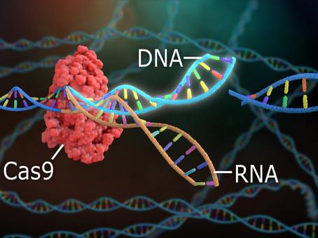 Potential of Prime Editing over CRISPR in Healthcare