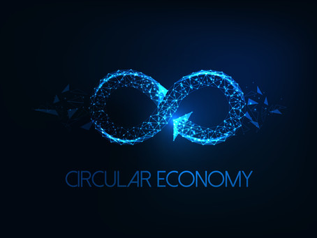 Importance of Biomass in Circular Economy