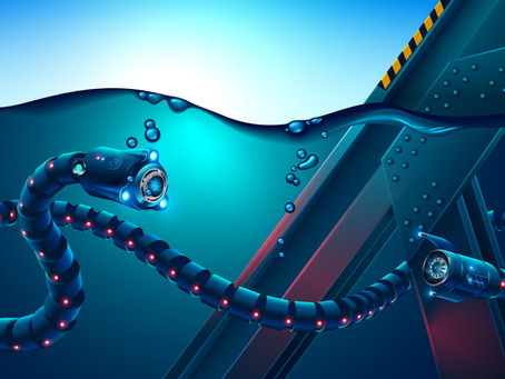 Snake Robots in the Oil and Gas Industry