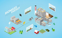 Application of Biomass as Energy Storage