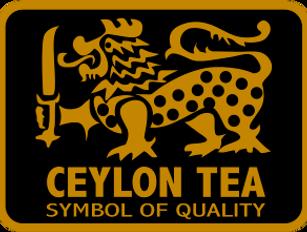 lion_logo.png