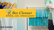 Bee Cleaner
