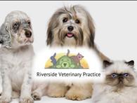 Riverside Veterinary Practice (The)