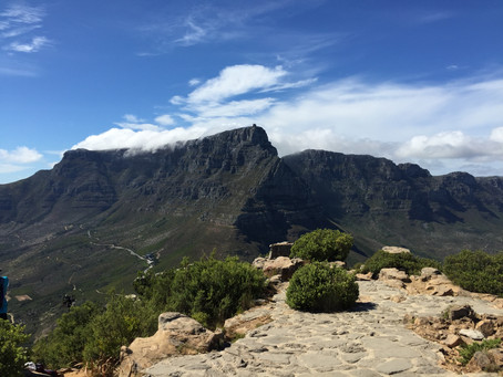 Join us for a hike up Table Mountain