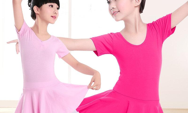 Sleeve Dance Leotard Tutu Dance Wear Ballerina Clothes for Girls