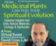 MedicalPlants_intro_recangle.jpg