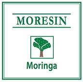 Moringa.jpg