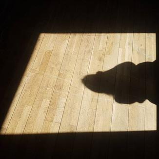 Found @sarajarvieclark's shadow performi