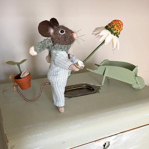 Donny mouse