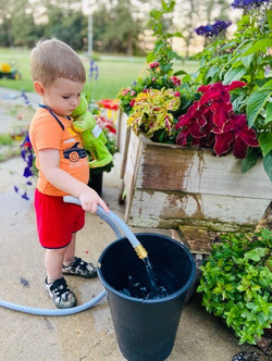 emersonwatering