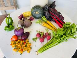 veggies week 14