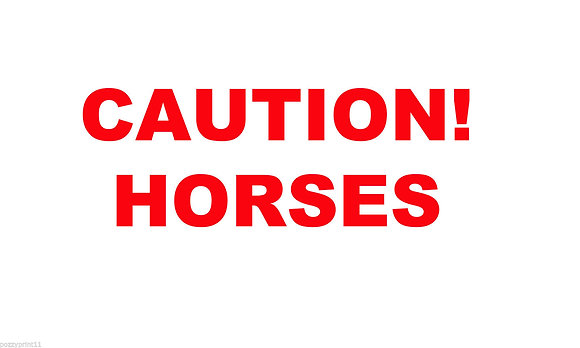 Caution Horses Class 2 Reflective sticker