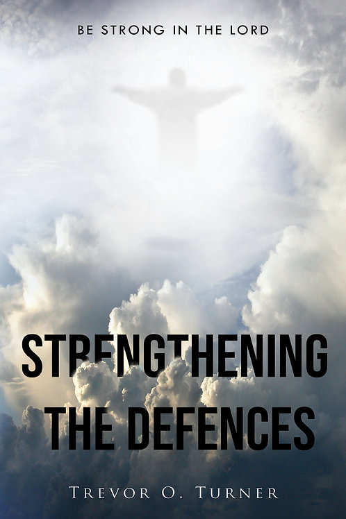 Strengthening the Defences - eBook