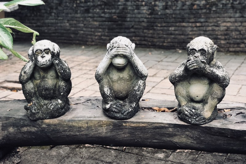 Hear no evil. See no evil. Speak no evil. Photo by Joao Tzanno on Unsplash