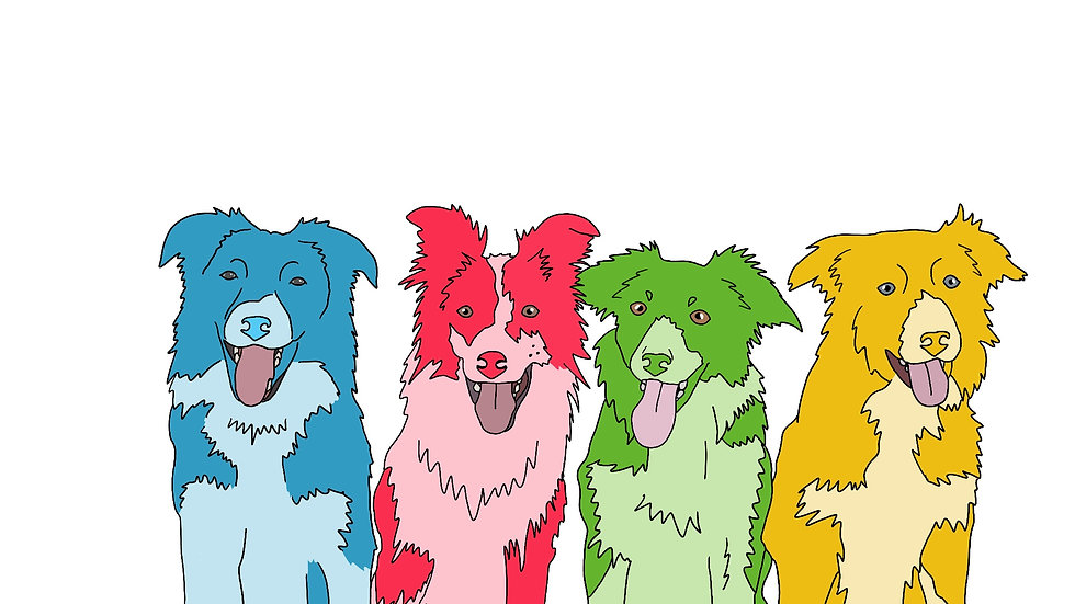 Digitalised Pet Illustration