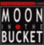 moon_in_the_bucket.jpg