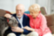 pet-therapy-for-the-elderly.jpg