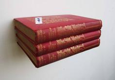 Book Shelf 7
