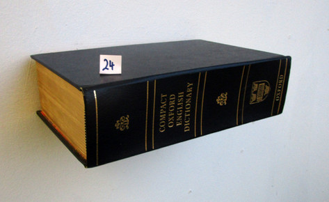 Book Shelf 24