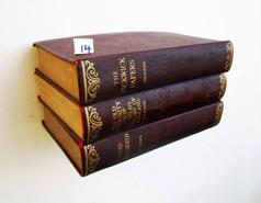Book Shelf 14