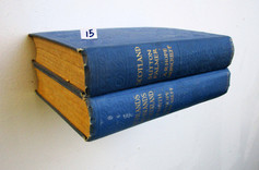 Book Shelf 15