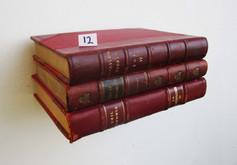 Book Shelf 12