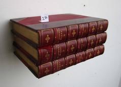 Book Shelf 27