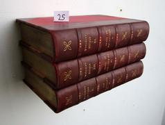 Book Shelf 25