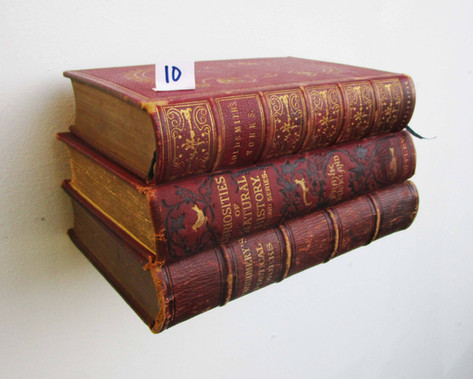 Book Shelf 10
