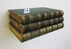 Book Shelf 19