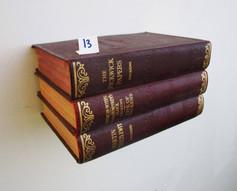 Book Shelf 13