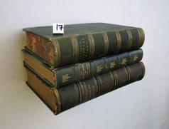 Book Shelf 17