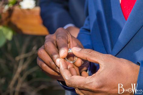 Kidar & Sumeshnee WeddingKidar & Sumeshnee Wedding