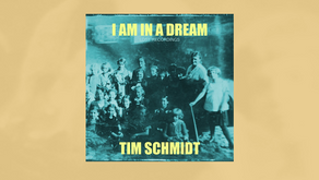 Album Release 06/2020: I Am In A Dream: Lost Recordings - dreamy folk songs by Tim Schmidt