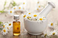 herbs, homeopathic remedies