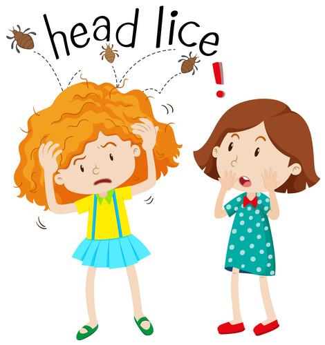 head lice children