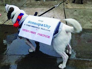 Veterinary Homeopathy Under Threat