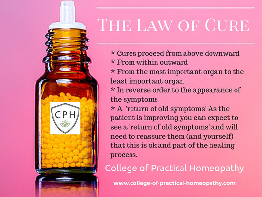 How well does your Homeopathic practitioner follow the Principles of Healing?