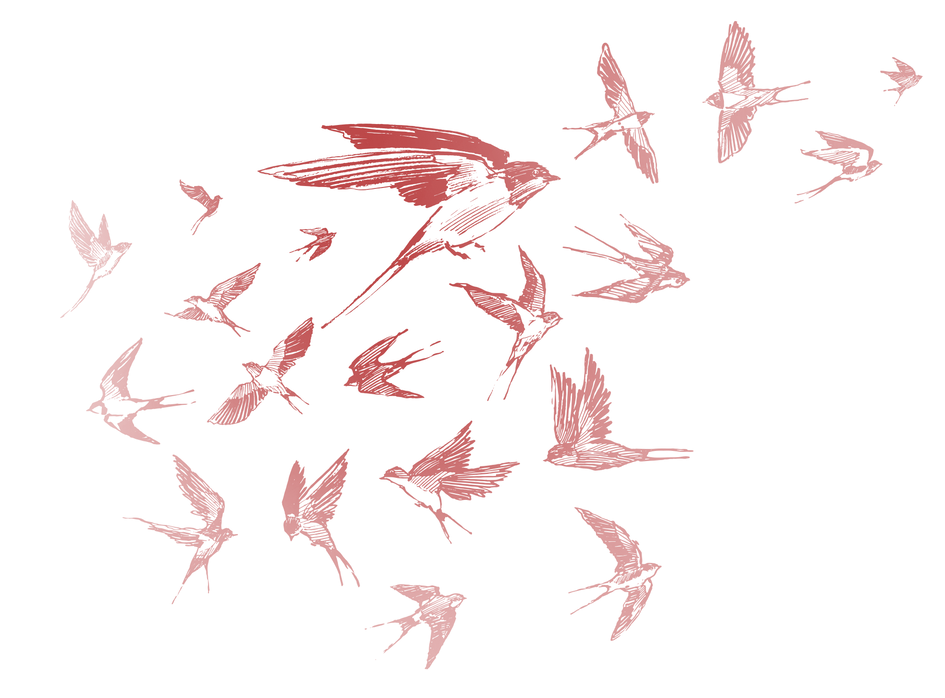 gkml_birds_2.png