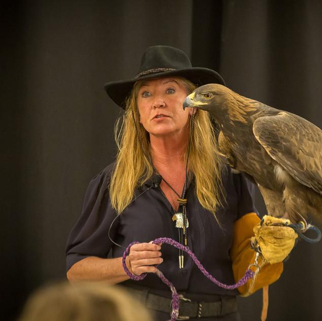 Dakota the Golden Eagle