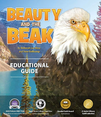 Pages from BEAUTY AND THE BEAK Education