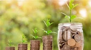 money to grow plants as an example of green finance