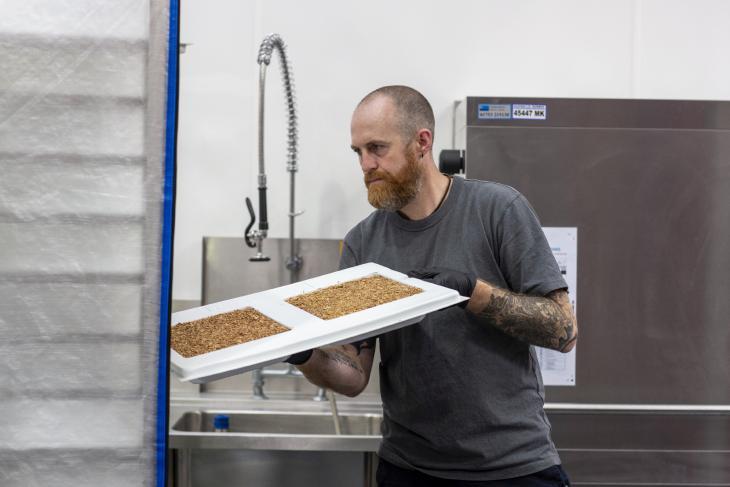 Magic Mushroom Company's packaging being prepared